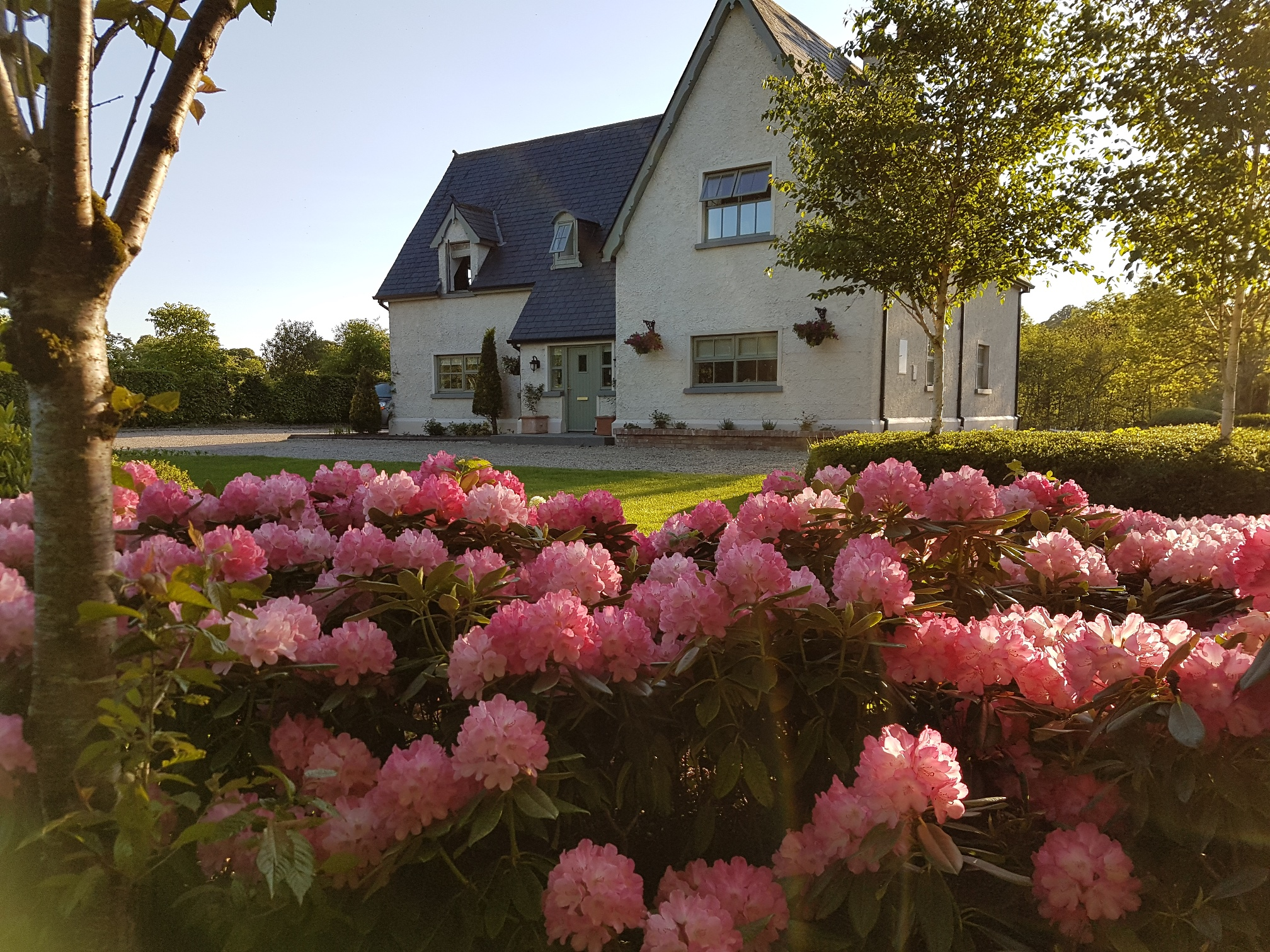 River Cottage Garden flowers self catering leitrim